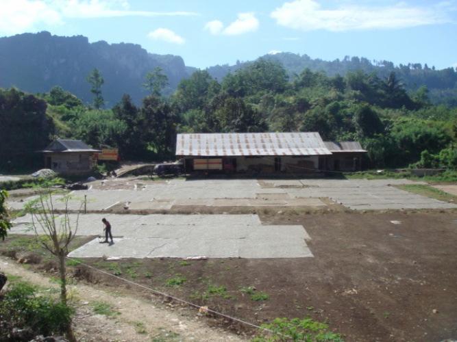 Indonesia Kalossi Coffee-3