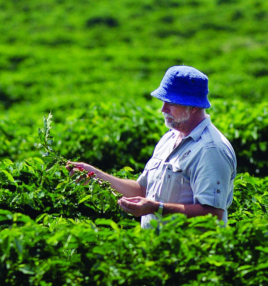 Skybury Coffee_owner Ian MacLaughlin in coffee plantation