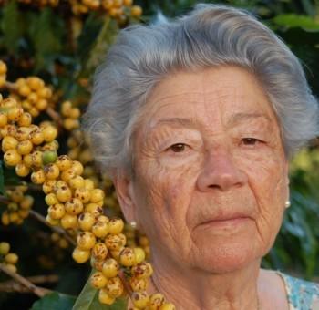 brazil-fazenda-sertao-yellow-bourbon-pb-natural-01