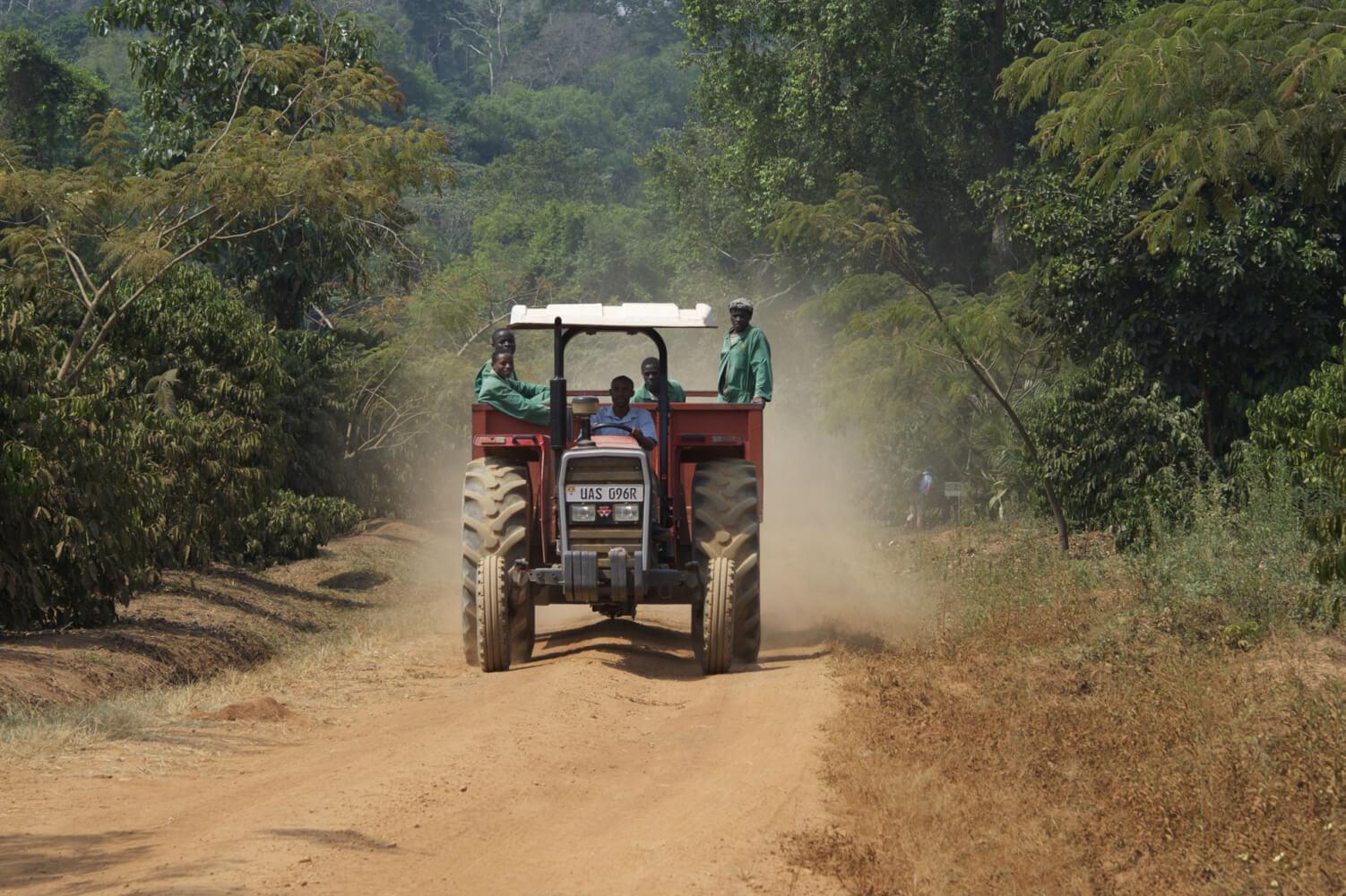 kaweri-road