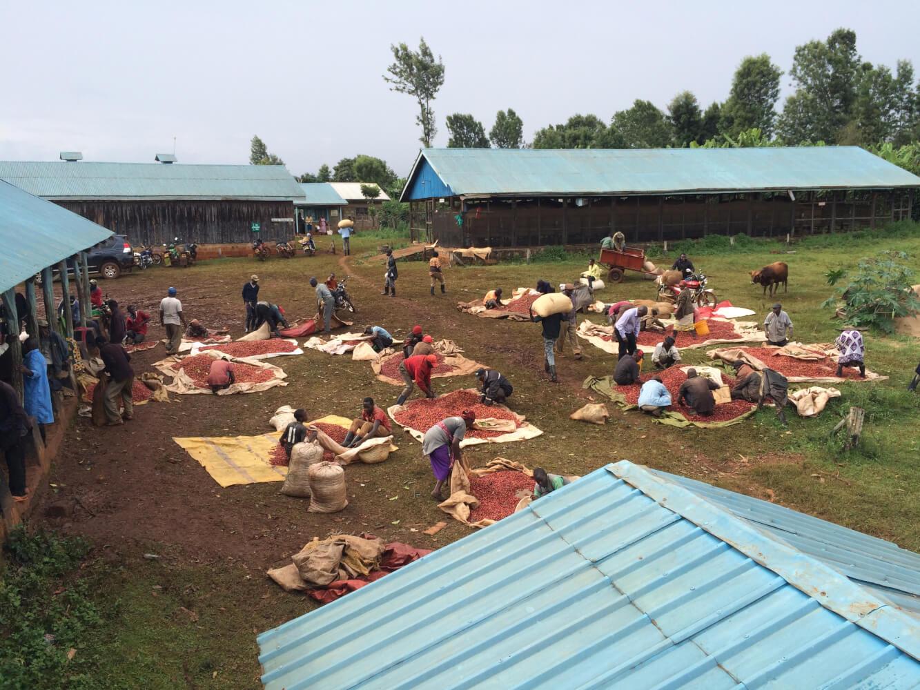kenya images 2